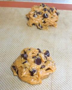 Pumpkin Chocolate Chip Cookies (1)