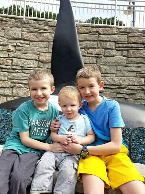 Sea World with the boys